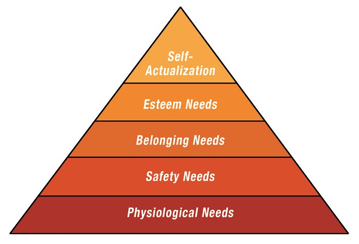 Theory of Human Needs Abraham Maslow