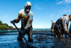 Why Oil Spills Are Dangerous to the Environment